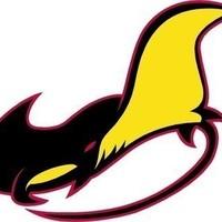 Small manta ray logo final proof